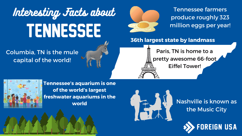 31 Interesting Facts About Tennessee