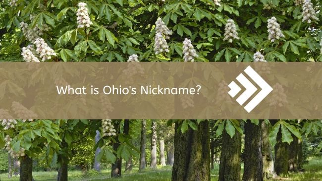Read more about the article Ohio's Nickname