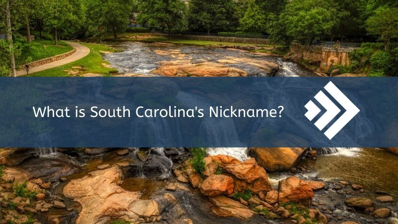 Read more about the article South Carolina's Nickname