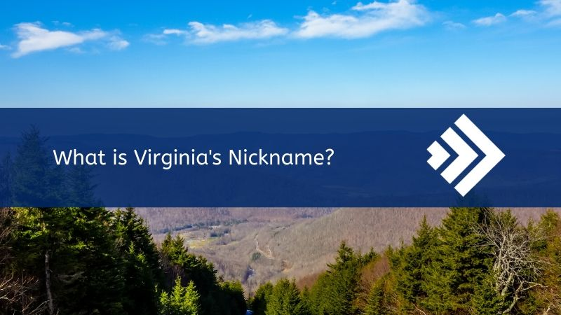 Read more about the article Virginia Nickname